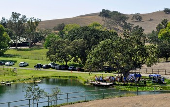 13th Annual Vineyard Picnic & Tour